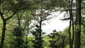 김포수목장 by 다하다