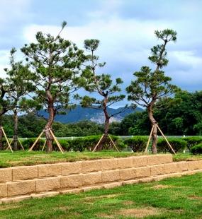 곤지암수목장