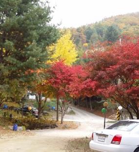 홍천 사찰수목장
