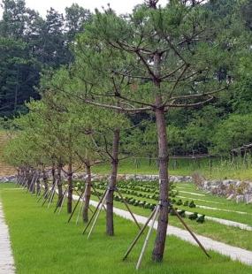 용인 수목장추천