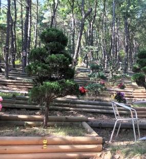 김포수목장